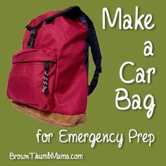 Make a Car Bag for Emergency Preparedness. A good idea now that I'm driving often to class and back.