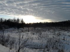 Beautiful evening for a hike on the Cataraqui Trail - near Perth Road Village @Cataraqui Region Conservation Authority