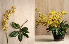 """Folhagens e orquídeas costumam aguentar mais tempo do que as flores de corte convencionais. Outra dica para prolongar a duração é garantir que o vaso esteja limpo antes de receber as espécies. """"Troque a água a cada dois dias e aproveite para lavar o recipiente cm esponja e sabão"""", indica Luiza Ceridono, da Bothanica Paulista"""