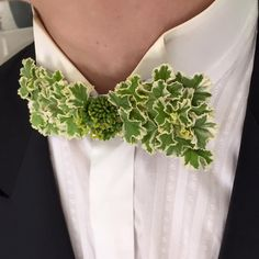 by Thistle and Bone This Bow Tie of greens makes a dashing alternative for the traditional boutonnière White Boutonniere, Rustic Boutonniere, Groomsmen Boutonniere, Floral Bow Tie, Corsage Wedding, No Rain, Floral Fashion, Corsages, Wedding Groom