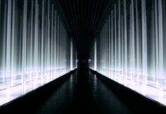 PRISM DESIGN | Infinity Bamboo Forest installation | Wuxi, China.