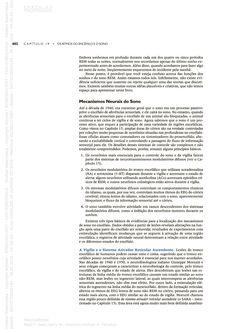 Página 19  Pressione a tecla A para ler o texto da página