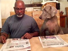 """""""I see your looking at the 'Quotes' section dad... are you finally going to get me some Pet Insurance?! I think we're finally on the same page!""""  To apply for a quote today, head on over to https://farmers.petsbest.com/step1?qv1=790929&qv2=AGENCYWEBSITE&qv4=FARMERS #corwinrey"""