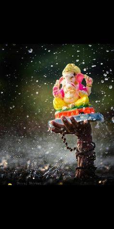 On Ganesh Visarjan the devotees immerse the idol in water.