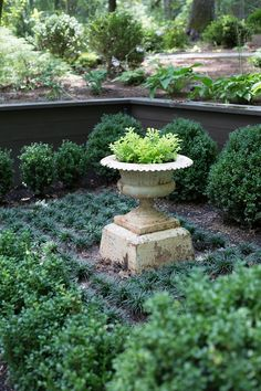 "Baudoin says that the plan was to have a kitchen garden, ""but mother nature did not provide enough sunlight."" Instead, they planted a parterre garden, adding a formal touch to the otherwise rustic setting."