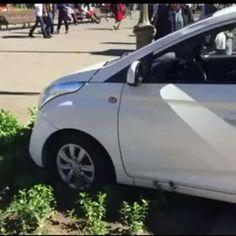 Candidato ciego lanza campaña manejando auto y casi provoca accidente - Terra Chile