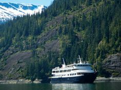 Un-Cruise Adventures--The Safari Endeavour is able to go to places in Alaska that larger ships cannot. So looking forward to this in Jun/Jul Small Ship Cruises, Norway Fjords, Norway Travel, Tourist Information, Alaska Cruise, Travel Agency, Oh The Places You'll Go, Vacation Spots, Travel Pictures
