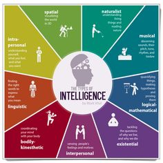 MULTIPLE INTELLIGENCES Howard Gardner of Harvard has identified a number of distinct intelligences, suggesting that students possess different kinds of minds and therefore learn, remember, perform,...