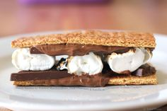 Gooey Smores with Toasted Marshmallows, Dark Chocolate and Nutella on Cinnamon Graham Crackers