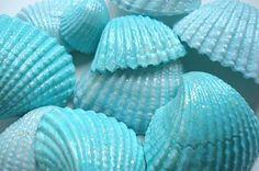 Aqua Seashells