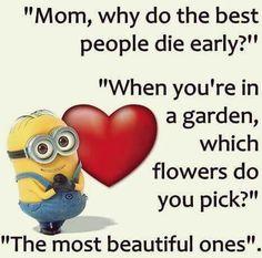 Minion Quotes                                                                                                                                                                                 More