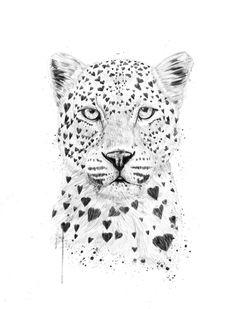 LOVELY LEOPARD » Prints