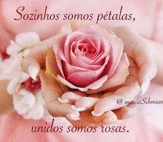 #frases #pensamentos #reflexão #citações #flores #bomdia #rosas #vida #união #fé #esperança