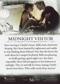 Midnignt visitor (visita de medianoche) ♥ (02)