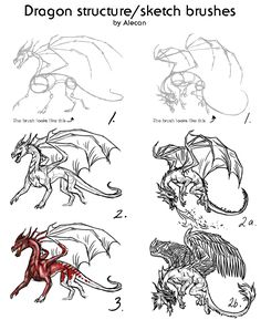 Dragon structure/sketch brushes by ~alecan on deviantART Fantasy Dragon, Dragon Art, Fantasy Art, Animal Sketches, Animal Drawings, Manga Drawing, Drawing Sketches, Drawing Ideas, Dragon Anatomy