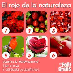 DE TODO UN POCO: TEST. El rojo en la naturaleza.