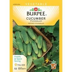 recipe: bush bean seeds home depot [14]