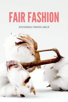 Do you want to make the switch to sustainable fabrics for your sportswear? You've made the right decision! Ethical and eco-friendly fashion Sustainable Fabrics, Sustainable Clothing, Sustainable Fashion, Big Fashion, Slow Fashion, Popular Clothing Brands, Business Major, Eco Friendly Fashion, Fashion Labels