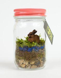 Bunny Mini Moss Terrarium by MossLoveTerrariums on Etsy, $10.00