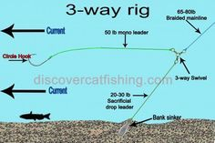 Catfish rigs: How to tie a catfish rig