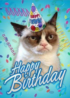 Found On Bing Grumpy Cat Birthday Funny Cards Memes Greetings