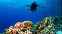 Discover the Beauty of Sharm El Sheikh