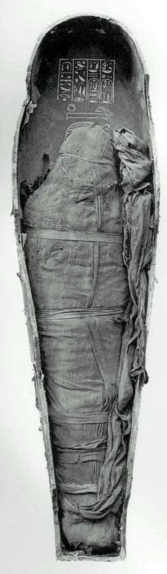 Amenhotep III wrapped. Amenhotep III, King of Egypt (1390-1352 BC) Amenhotep III was the son and successor of Thutmose IV. The supposed divine nature of his birth is represented in a series of reliefs inside the Luxor Temple.