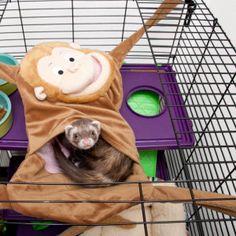 Marshall Hangin' Monkey Ferret Hammock | Toys & Habitat Accessories | PetSmart $24.99