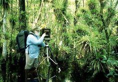 Preserving Eden: Clyde Butcher's FL photographs (www.southfloridamuseum.org)