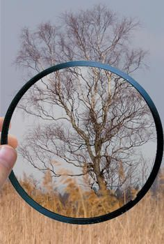 Everything You Need To Know About Lens Filters