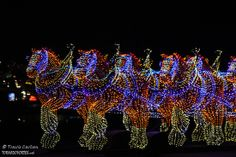 Festival of Lights in East Peoria, Illinois. Photo by Travis Carlson