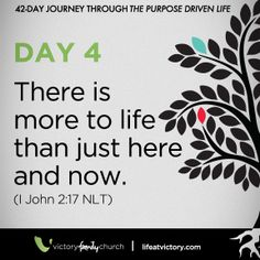 8 Best Purpose Driven Life Images Purpose Driven Life Sunday