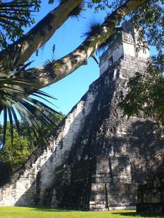 Guatemala - Department of El Peten - Tikal National Park - ©Silvan Rehfeld Mayan Ruins, Ancient Ruins, Tikal, Heritage Center, Archaeological Site, Old Buildings, List, World Heritage Sites, Places Ive Been