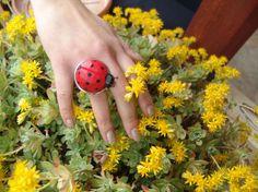 Ladybug Ring / Giant Ladybug / Handmade by CreationsbyTzeniKa