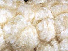 Kapokfaser - natur Wollknoll | Details