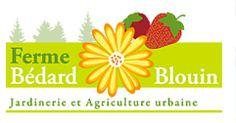 À chaque type de sol ses légumes - Ferme Bédard et Blouin - Centre jardin et Agriculture urbaine
