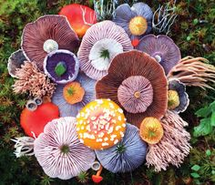 Voice of Nature - Mushroom landart by Jill Bliss