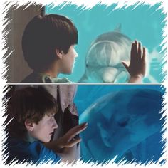 Time flys when your putting your hand on a glass window. Dolphin Tale 2, Sea Dolphin, Nathan Gamble, Clearwater Marine Aquarium, Wal, Great Movies, Dolphins, Animals Beautiful, Window