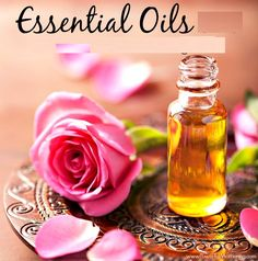 You can buy fabulous 100% pure & high quality aromatherapy essential oils online only on aromacelesta.com. #Oakmoss_Absolute_Essential_Oil #Verbena_Essential_Oil