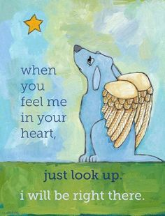 For all the puppy dogs (even kitty cats) I've loved!