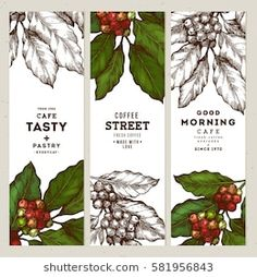 Find Coffee Tree Illustration Engraved Style Illustration stock images in HD and millions of other royalty-free stock photos, illustrations and vectors in the Shutterstock collection. Thousands of new, high-quality pictures added every day. Coffee Label, Coffee Logo, Coffee Branding, Coffee Packaging, Nitro Coffee, Hot Coffee, Coffee Shop, Coffee Illustration, Tree Illustration