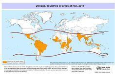 Dengue Fever - Global