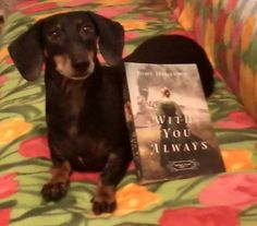 Megan Myhren Bennett's Sampa! #withyoualways #jodyhedlund #orphantrain #booklove http://jodyhedlund.com/books/with-you-always