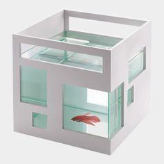 フィッシュ コンドミニアム:(TEDDY LUONG) MoMA STOREの通販 | モダンでアートなリビング、インテリア雑貨・デザイン雑貨を通信販売で
