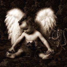 Angels Amongst Us