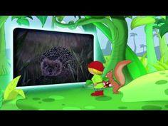 Pixi Wissen TV - Tiere in Garten und Wald - YouTube