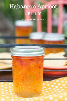 Habanero Apricot Jelly Habanero Apricot Jelly is one of my favorite sweet and spicy pepper jellies. I am obsessed with hot pepper jelly or hot pepper jam recipes. This Habanero Apricot Jelly is amazing. Pepper Jelly Recipes, Hot Pepper Jelly, Beer Jelly Recipe, Canning Pepper Jelly, Canning Pickles, Jam Recipes, Canning Recipes, Canning Tips, Dinner Recipes