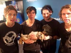 5SOS ft. puppy. This is seriously adorable