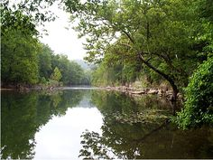 Swan Creek near Forsyth MO  my favorite place in Missouri