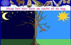 Schooltv: Huisje Boompje Beestje - Spelletjes - Dag en nachtdieren